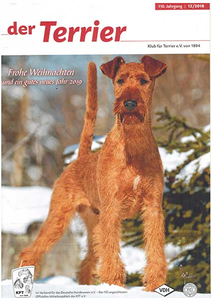 """Der Terrier"", Dezember 2018"