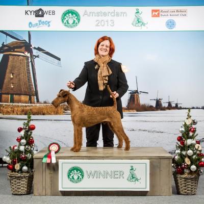 Best of Breed Jugendwinner Amsterdam Winner Amsterdam
