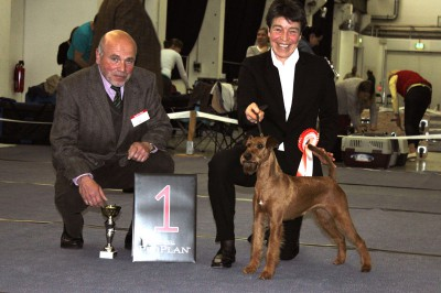 CAC-Dresden-2013-BOB_800[1]  Rassebeste 2. Platz Bester Hochläufer Scooby-Doo Silvester von der Emsmühle Richter: Mr. Reinhard Ritz(D)