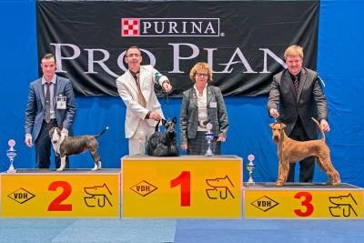 CK2L4186_800[1]  Rosalind von der Emsmühle 3. Platz in der Terriergruppe Richterin: Margret Möller-Sieber (D)
