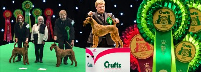 Crufts-2015