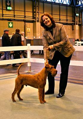 Dog CC Napoletano von der Emsmühle (Merrymac Copyright x Gabban von der Emsmühle) Owner: Sabine Meister, Handler: Karina Grüttner