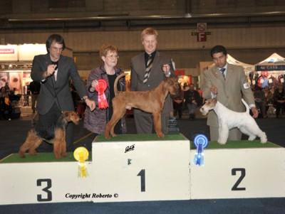 Sieger der Terriergruppe - Darren von der Emsmühle (Viscount von der Emsmühle x Hipp Hopp von der Emsmühle) Richterin: Elsbeth Clerc