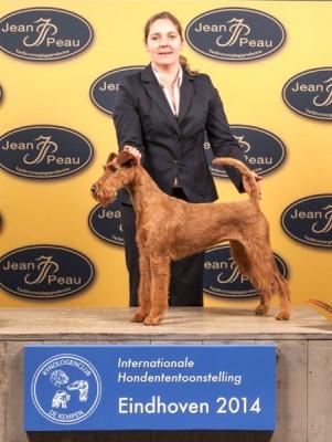 IMG_9276_600[1]  Scarlett von der Emsmühle (Napoletano von der Emsmühle x Irish Fellow Empire) Rassebester Irish Terrier  Richterin: Elisabeth Feuz (CH)