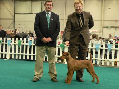 Best of Breed, Richter Mr. D. Manton (IRL)