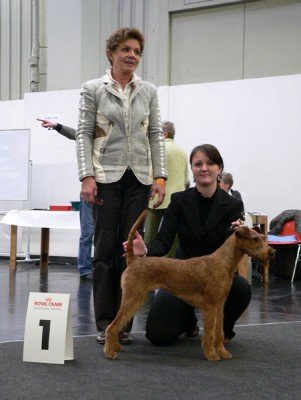 Best of Breed   Nabou Aimee von der Emsmühle  Richterin: Frau Petra Friedl (D)
