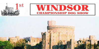 Windsor-1_400[1]