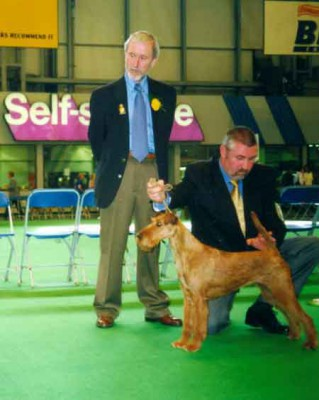 highlights_crufts_2001_cocksure-calypso_450