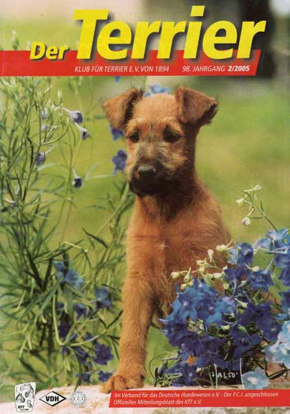 """Der Terrier"", Februar 2005"