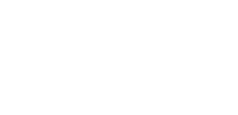 Irish Terrier von der Emsmühle